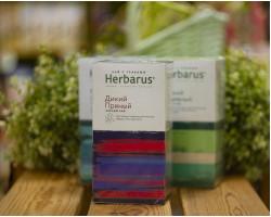 """Чай чёрный с травами ™ """"Herbarus"""" Дикий пряный в фильтр пакетах 24 шт *2г"""