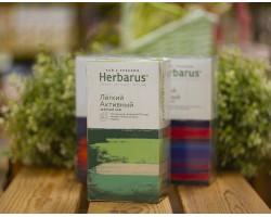 """Чай из трав  ™ """"Herbarus"""" Легкий Активный в фильтр пакетах 24 шт *2г"""